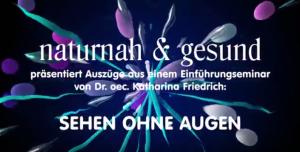 Impressionen und Ergebnisse aus einem Seminar 2018 in Hannover (Video 45min.)